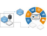 Web 系統開發及維護-雲湧資訊 Cloud-Bridging