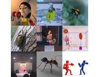 3D動畫-專業調動態