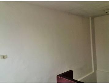 壁癌處理、批土油漆粉刷