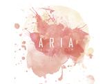 Aria自由工作室