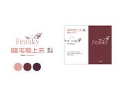 Feasky VI